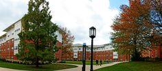 Indiana University of Pennsylvania Dorms | Indiana University of Pennsylvania - Student Housing