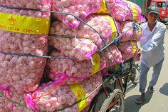 Surabaya | Pabean Market, China Invasion - Garlic -  East Java - Indonesia