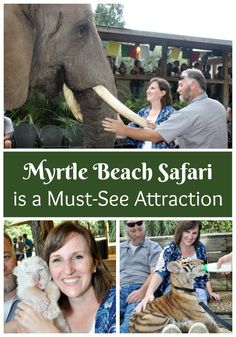 Myrtle Beach Safari is a Must-See Attraction - Clever Housewife Myrtle Beach Things To Do, Myrtle Beach Vacation, North Myrtle Beach, Beach Trip, Beach Vacations, Florida Vacation, Dream Vacations, Candid Photography, Documentary Photography