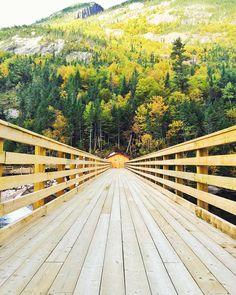 Le barrage des érables se marie tellement bien avec le décor du Parc National des Hautes-Gorges-de-la-Rivière-Malbaie. Photo prise par @mapieh pour Tourisme Charlevoix #MonCharlevoix #charlevoix #parcnationaldeshautesgorges #hautesgorges #barragedeserables #rivieremalbaie #bridge #wood #mointains #nature #explorequebec #explorecanada #quebecoriginal #quebecenphotos #quebec #canada #travel #parcnational