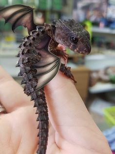 Little dragons! Post with 39 votes and 0 views. Shared by Little dragons! Cute Fantasy Creatures, Mythical Creatures Art, Cute Creatures, Magical Creatures, Woodland Creatures, Baby Animals Super Cute, Cute Little Animals, Cute Reptiles, Little Dragon