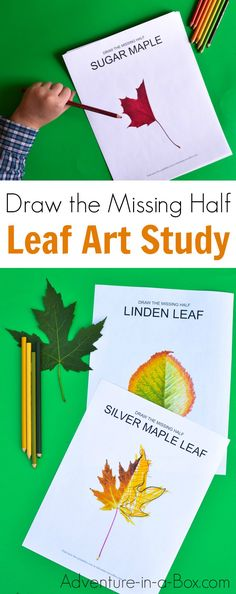 Challenge your kids to draw the missing half of a leaf. A fun autumn nature craft and an art study of a leaf! Ten free printable drawing prompts are included.