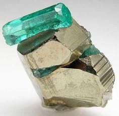 Emerald on Pyrite ☙CRYSTALS❧ ☙minerals❧ ☙semi.precious.stones❧