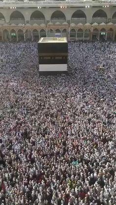 Islamic Images, Islamic Videos, Islamic Pictures, Islamic Art, Mecca Islam, Mecca Kaaba, Good Morning Beautiful Flowers, Beautiful Pink Roses, Iphone Wallpaper Video
