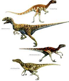 raptor dinosaur - Google Search
