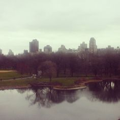 #nationaltakeawalkintheparkday Another photo from our recent travels. #CentralPark on a gray day. #twitter #newyork #travel #instatravel #nyc #graysky #walk
