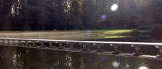 Ook in de Herfst is het Strandbad een plaatje!