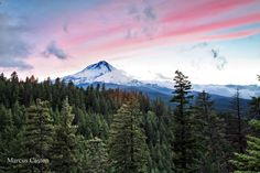 Mt Hood in the summer. Photo by Marcus Caston