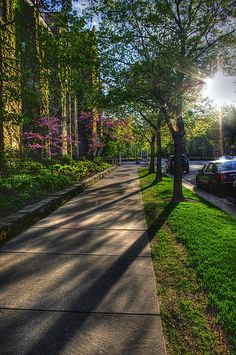 One Sunny Afternoon | The University of Chicago
