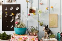 This photo is meant to pinpoint some of the many things a new homeowner can do with the home decor products, from small pins and decorations to throw pillows, available at Urban Outfitters, to make a space feel like their own.  This is targeting the young adult population which wants to put a piece of their own personality into everything they do.