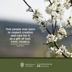 That people may learn to respect creation and care for it as a gift of God. #PopeFrancis #prayer #catholic #nature