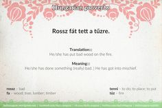 Proverbs 22, Hungary, Languages, Something To Do, Fun Stuff, Wordpress, Learning, Memes, Board