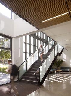 "<b>Project:</b> Michael J. Homer Science & Student Life Center<p></p><b>Location:</b> Atherton, California<p></p><b>View:</b> Interior stairs<p></p><b>Architect:</b> <a href=""http://www.lmsarch.com/indexf.html"">Leddy Maytum Stacy Architects</a><p></p><p><"