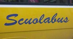 collaboratore professionale-operaio ed autista scuolabus