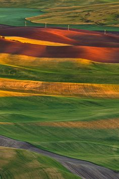 Lacy fields of. by Gleb Tarro on .View from Step Toe Butte, Palouse, Washington Beautiful World, Beautiful Images, Natural Wonders, Beautiful Landscapes, Beautiful Scenery, Aerial View, Amazing Nature, Mother Earth, Land Scape