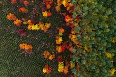 Soaring in the sky, enjoying a bird's eye view of the world is something many of us only fantasize about, but Polish photographer Kacper Photos 2016, Aerial Drone, Winter Photos, Paragliding, Aerial Photography, Photography Magazine, Photography Tips, Birds Eye View, Landscape Design