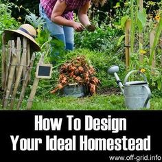 How to be a semi rural homesteader pinterest for Where to buy cheap land for homesteading