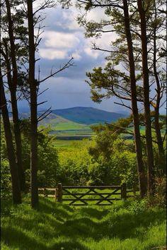 Cheviot Hills, Northumberland, England
