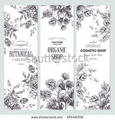 Herbal Background Stock Vectors & Vector Clip Art | Shutterstock