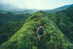 KUILAU RIDGE TRAIL,