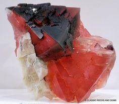 Fluorite rouge. Aiguille Verte, Chamonix-Mt Blanc, Haute Savoie, France. Taille=~8 cm Photo Marco Frigerio / Classic Rocks and Gems