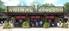 Healthy food options at Disney's Animal Kingdom park - Walt Disney World Resort. Build a better mouse trip.