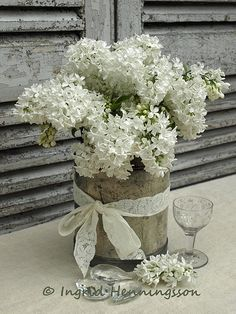 White lilacs in a vase with w white bow