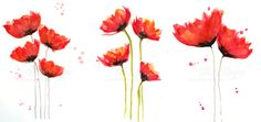 Learn How to Paint Flowers   Learning How to Paint Watercolor Poppies, My Way - Part 3 — 9th ...