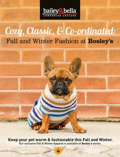 Raise your paws if your excited for fall and winter fashion! We sure are! Check out the great new apparel from Bailey & Bella in our online Lookbook.