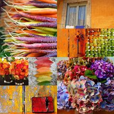 The French Tangerine: ~ mosaic magic