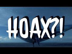 JE MODRÁ VELRYBA HOAX?