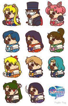 Pretty Soldier Sailor Puglie by Puglie Pug