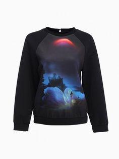 Black Sweatershirt With Swan Printting - Choies.com