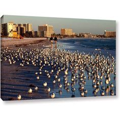 Lindsey Janich 0700A Gallery-Wrapped Canvas, Size: 12 x 18, Brown