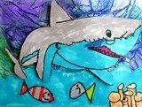 Artsonia Art Exhibit :: Great White Sharks and Mako Sharks