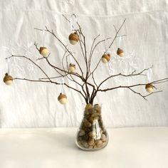 Árvore com bolotas