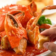Chinese Chilli Crab Recipe, Very popular dish in chinese. This is an easy chili crab recipe that anyone can make at home. Chilli Crab Singapore, Singapore Food, Crab Dishes, Seafood Dishes, Lobster Dishes, Seafood Platter, Chilli Crab Recipe, Fish Batter Recipe, Seafood