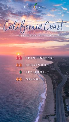 Cedarwood Essential Oil - 15 ml Looking for pure cedarwood essential oil? Young Living Cedarwood oil has a woodsy scent and may have added skin benefits.