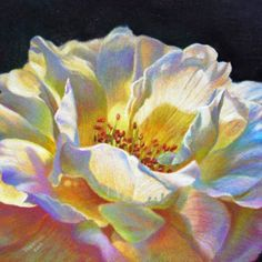 106 best colored pencil drawings images on pinterest in 2018