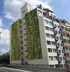 Com um dos menores índices de área verde do país São Paulo ganha jardins verticais na região central