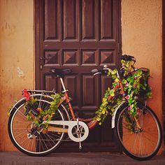 A bike in heaven. by Chaulafanita [www.juliadavilalampe.com], via Flickr