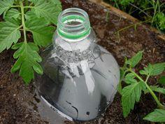 Conoce sobre esta manera muy cómoda, económica, inteligente y respetuosa con el medio ambiente para regar nuestras plantas...