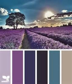 lavender color palette - Yahoo Image Search Results