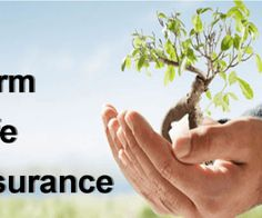 The Battle Over Term Life Insurance Rates and How to Win It