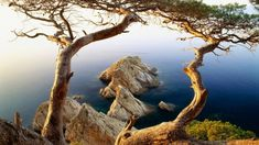 Nature of Spain