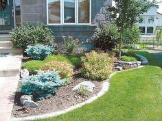 Garden Ideas Edmonton front yards in bloom edmonton - google search | landscaping