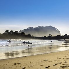 """@ed_kruger's photo: """"New Zealand Surfing"""""""