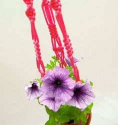 Wedding Idea - Strong - Indoor Outdoor - Thick Pink Macrame  Plant  Hanger 28 inches 5mm Hanging Planter - Gift Idea