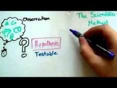 What is a Hypothesis, Theory and Law - video - YouTube