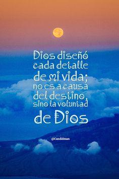 """""""Dios diseñó cada detalle de mi #Vida; no es a causa del #Destino, sino la #Voluntad de #Dios"""". @candidman #Frases #Reflexion #Candidman"""
